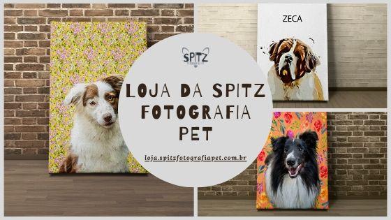 Por que comprar um quadro pet personalizado com a Spitz Fotografia Pet?